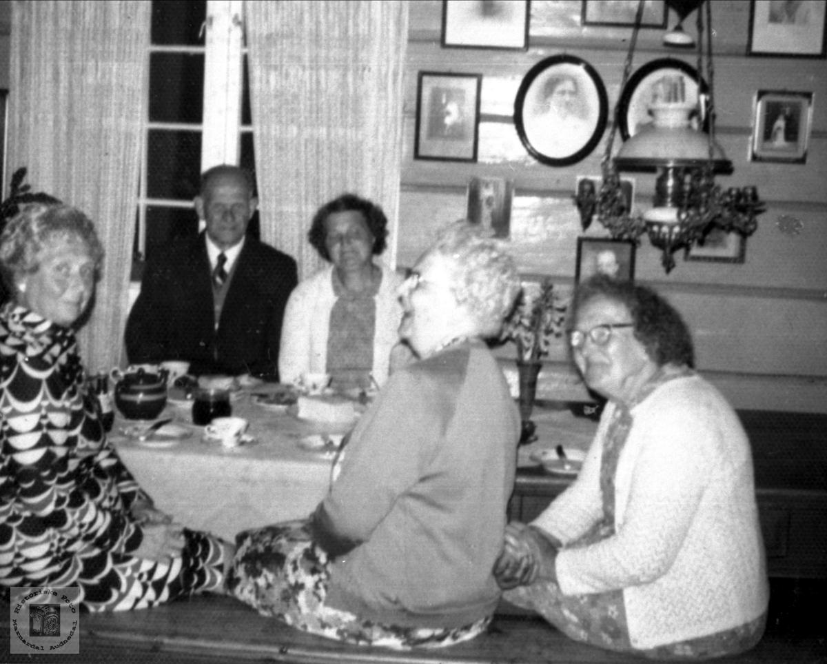 Besøk frå Lyngdal og USA på Røynesdal. Ukjent dame er Ovidia Nilsen, født Røynesdal . datter til Marie og Ole Røynesdal