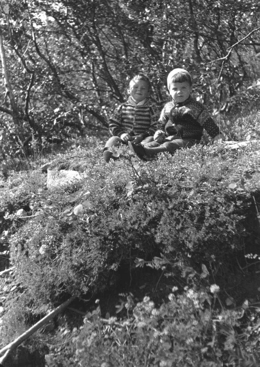 Rolf og Øystein Hauge på bærtur under krigen. Stedet er ukjent.