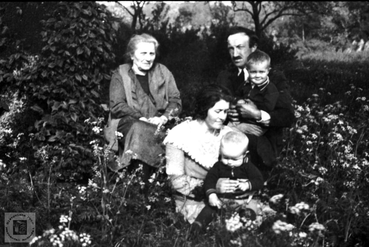 """""""I blomstereng"""".  Møll, Holum."""