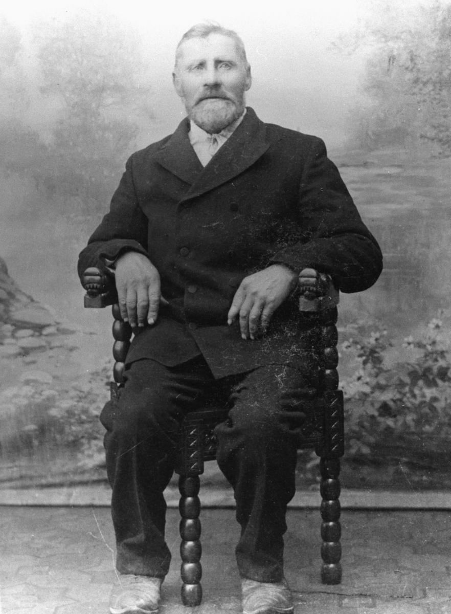 Portrett av Jakob Ballo ( Palo på finsk). Han sitter på et stol kledd i en mørk dress. Malt landskap som bakgrunn. Stolen har dragehoder på armlenene.