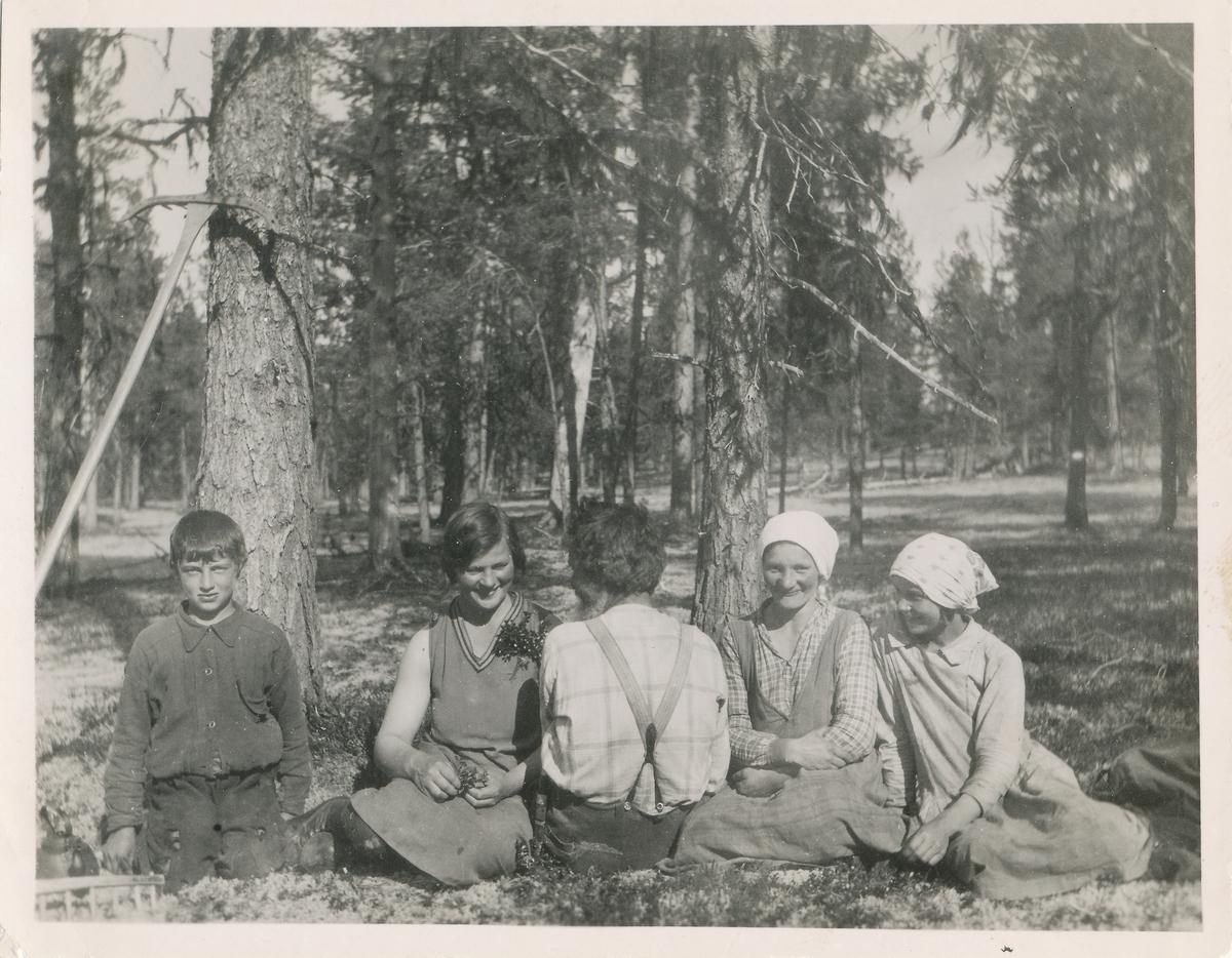 Fem ungdommer sitter i gresset ved en skog. To river er med i motivet, noe som antyder at de tar en pause fra å rake gresset.