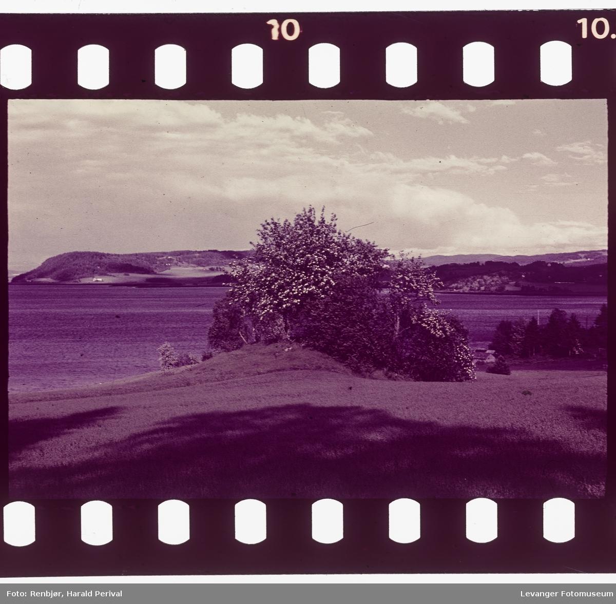 Utsikt på Nesset.Bilder fra Nesset.