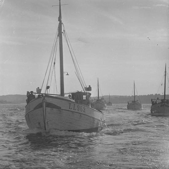 Fiskeflotta på väg