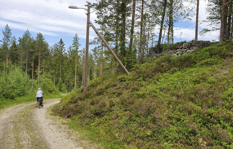Renna fra Linnertdammen gikk over i ei trerenne like over krysset ved IV. Lichtloch (8). (Foto/Photo)