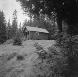 Busterud hytta i Gjerdrum. Gammel setervang brukt av skogsar