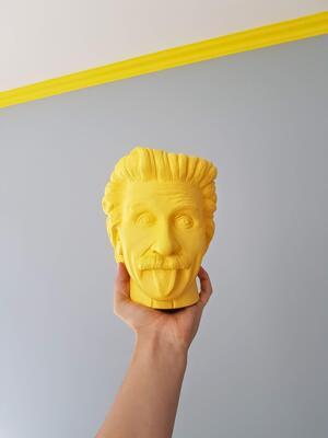 Albert Einstein i 3D print (Foto/Photo)