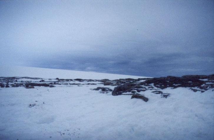I närheten Andréelägret på Vitön. Glaciär i bakgrunden