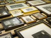 Veileder for registrering i Primus - fotografi