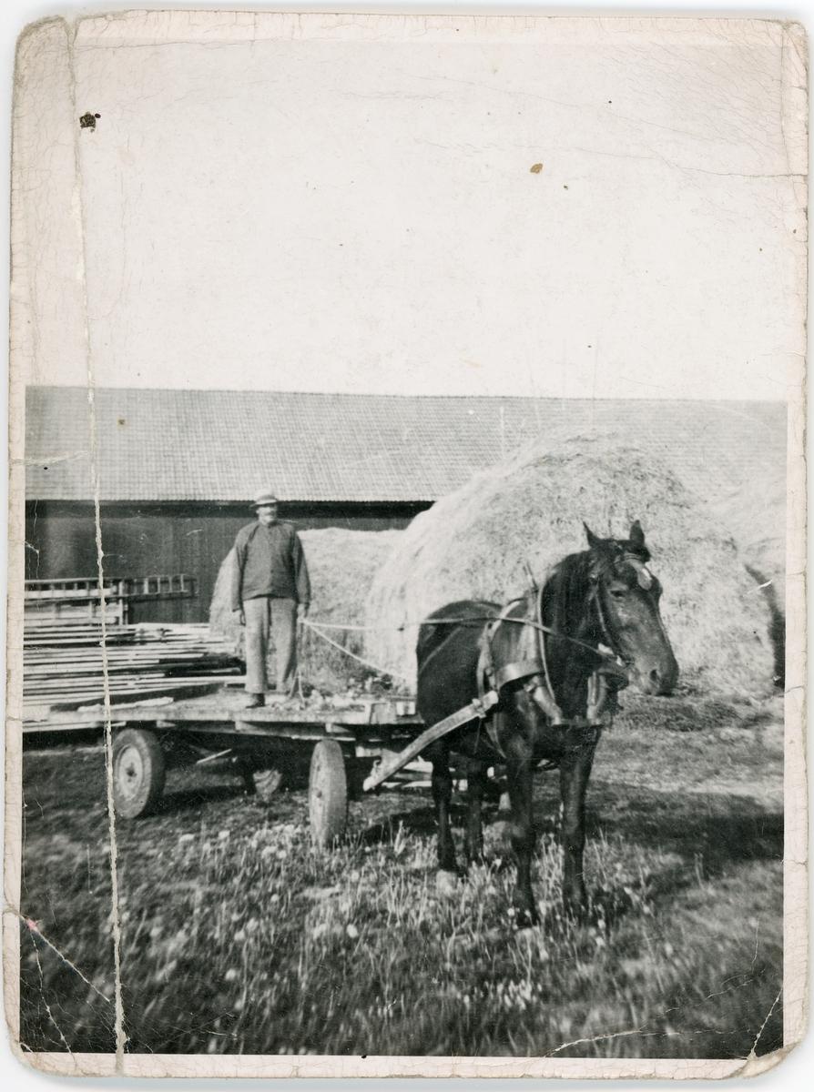Häst och gummihjulsvagn, Skogs-Tibble, Uppland