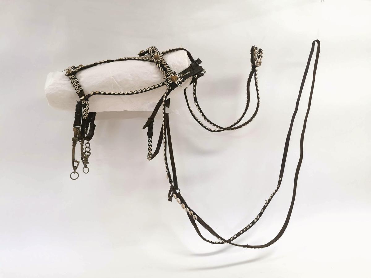 Hodelag til hest, dekorert med hvite skjell (kauri-skjell).