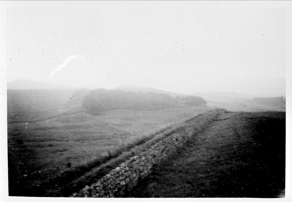 Hadrians mur, landskap