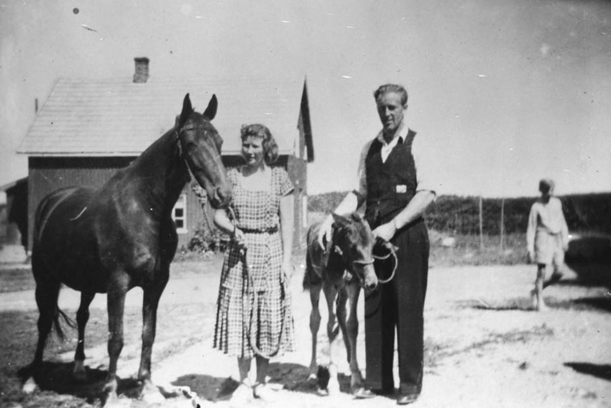 Kvinne og mann som holder h.h.v. en hest og et føll.