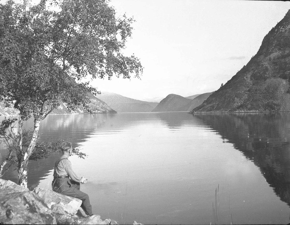 Fra en fjord.