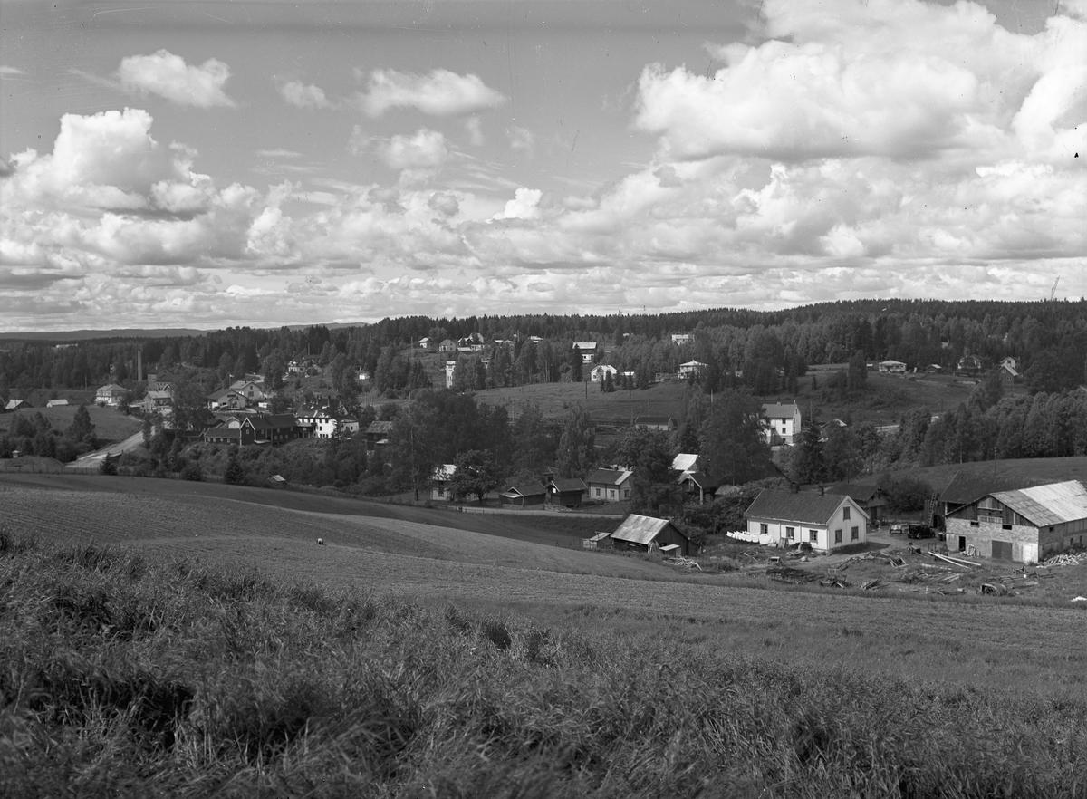 Kulturlandskap. Sommeren 1954. Dal med Dal Bygg i forgrunnen. Sobran fabrikk og Dal stasjon til venstre. Helt til høyre er gårdsbruket til Kristian Skytterseter.