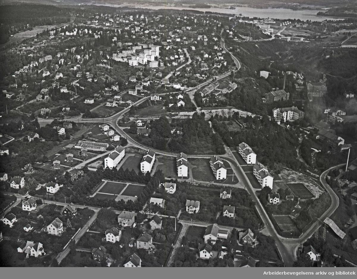 Flyfoto over Nygaard Terasse,.oktober 1953