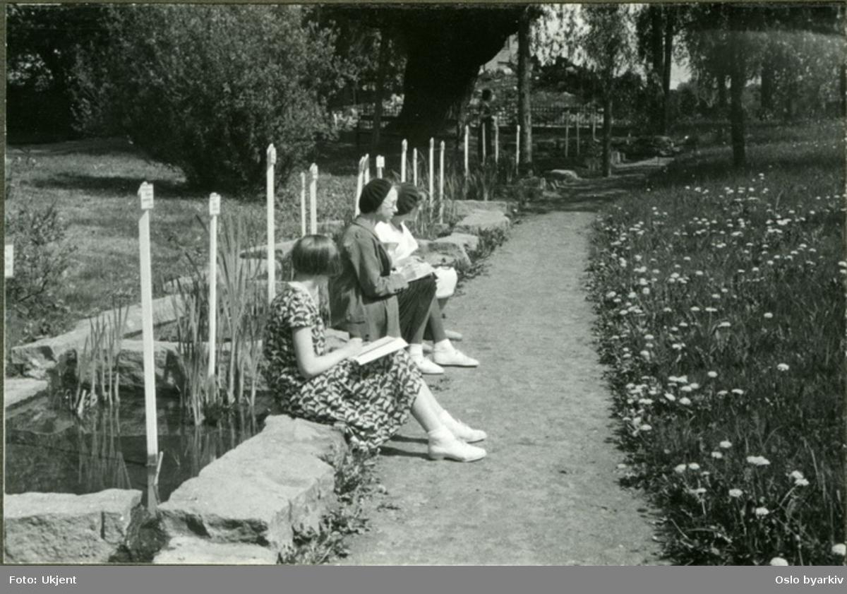 "En gruppe elever tegner i parken. (Botanisk hage) (Formingsundervisning). Albumtittel: ""Sofienberg skole femti år - første september 1933."""