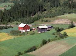 Flyfoto, Aaseth nordre,, Åsmarka, Ringsaker.