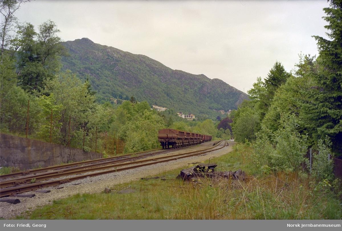 Sporet ved Fjøsanger holdeplass med hensatte godsvogner