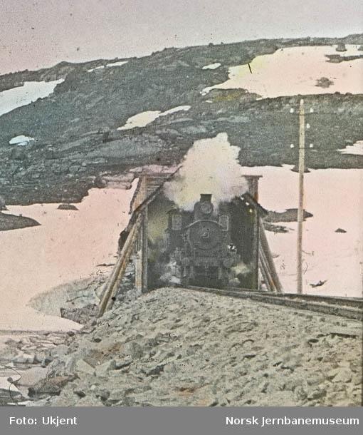 Parti fra Bergensbanen østre portal av vestre Fagernut tunnel
