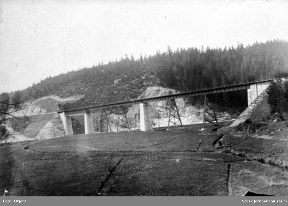 "Tyskland : ""Grosser Viadukt"" Wilzschhaus på banen Wilkau-Hasslau-Karlsfeldt i Sachsen, sett i retning Wilkau"