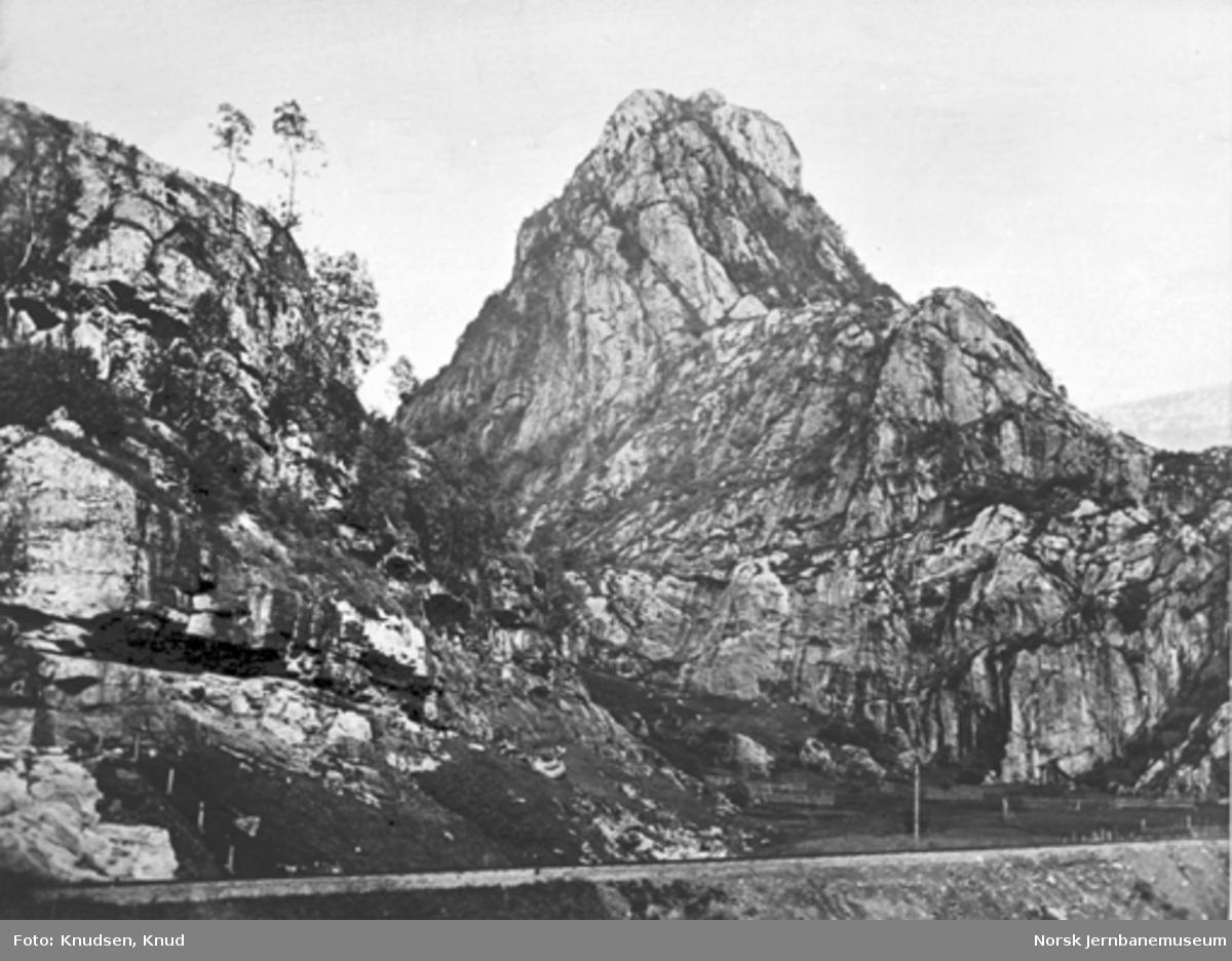 Parti fra Vossebanen; sporet med Dalenuten i bakgrunnen