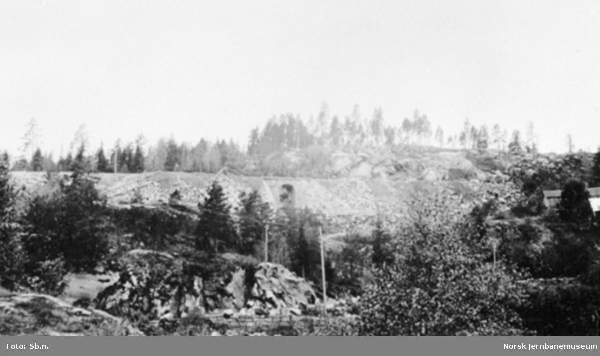 Sørlandsbanen ved Ringnes, med en steinhvelvundergang