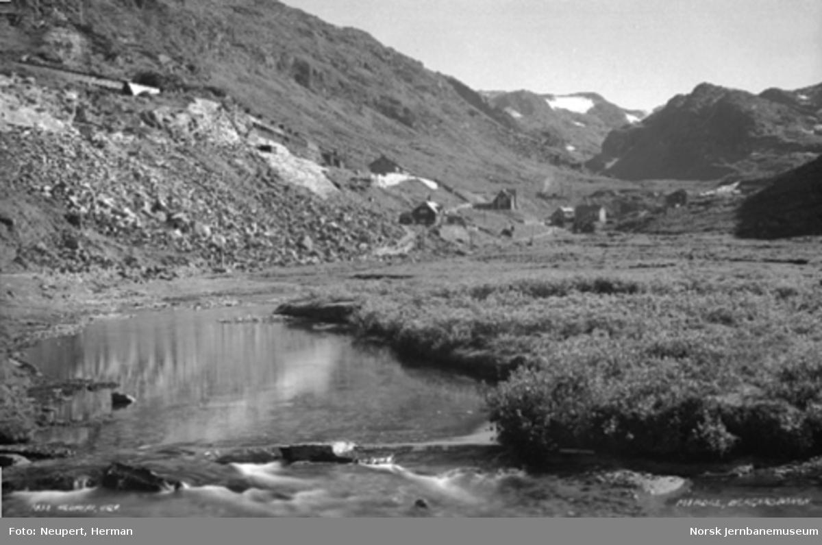 Oversiktsbilde over Myrdal stasjon sett fra dalbunnen