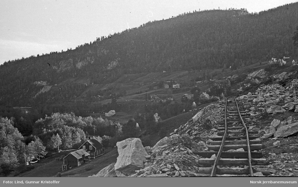 Nordlandsbaneanlegget : anleggsarbeid i Tømmerdal, sett sørover