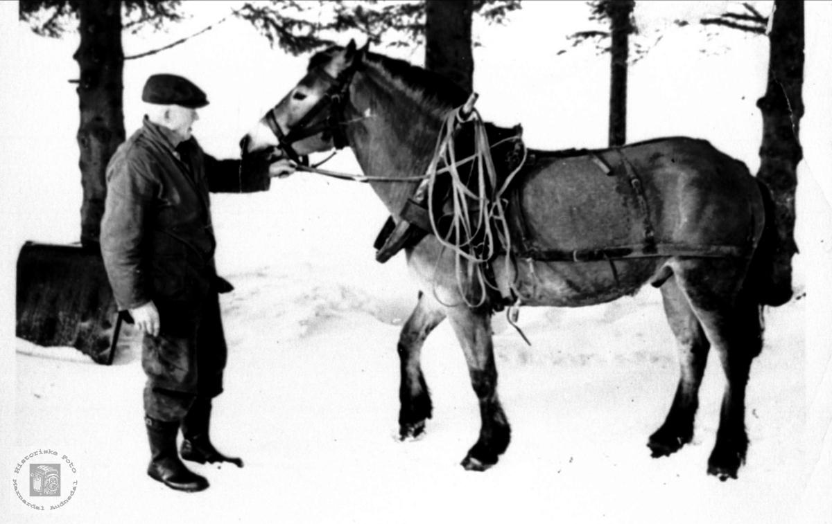 Knut S. Rosseland med hesten, Bjelland.