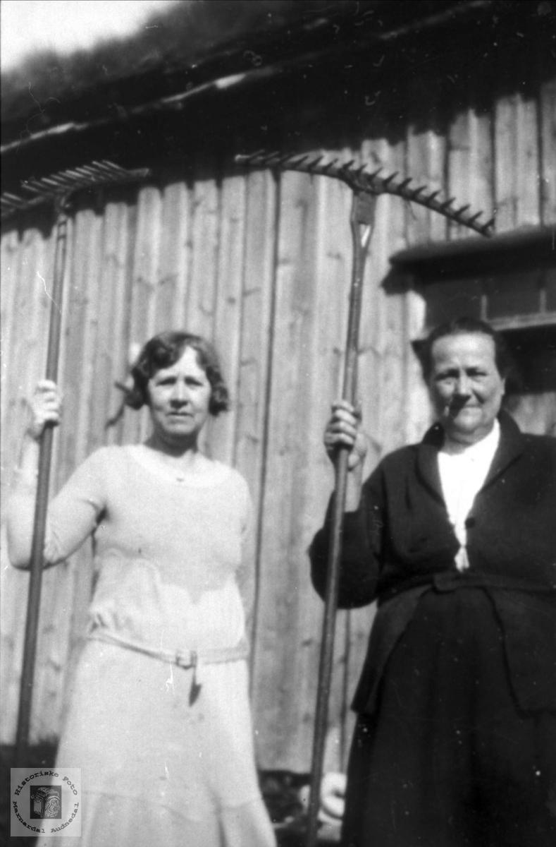 Portrett. Anna Røynesdal klar med rivene!