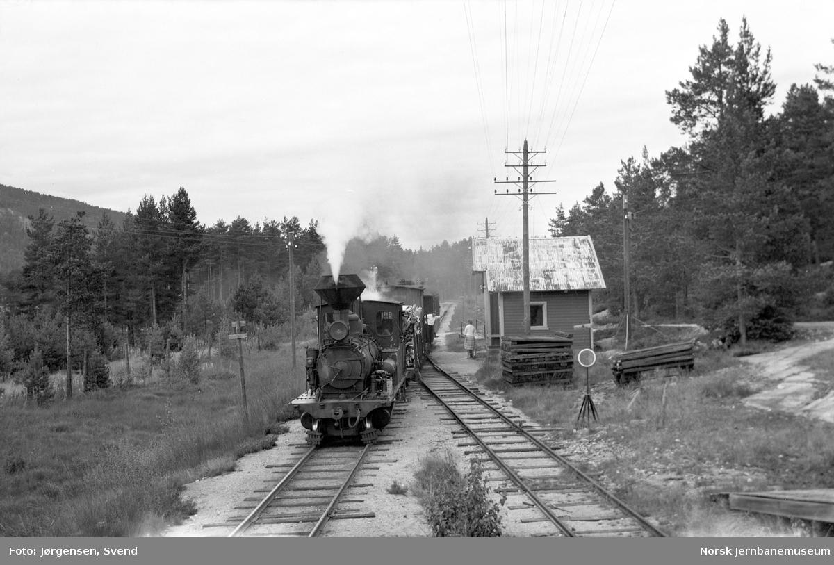 Godstog på Syrtveit holdeplass