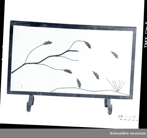 594 Landskap BOHUSLÄN  Eldskärmsgallret är utsmyckat med en kvist och sex stycken eklöv, som är lätt guldfärgade.       UMFF 68:3