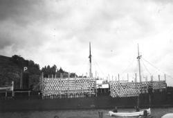 S/S BEO lastar silltunnor för Island 1936