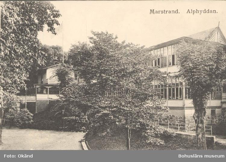 """Tryckt text på kortet: """"Marstrand. Alphyddan."""" ::"""