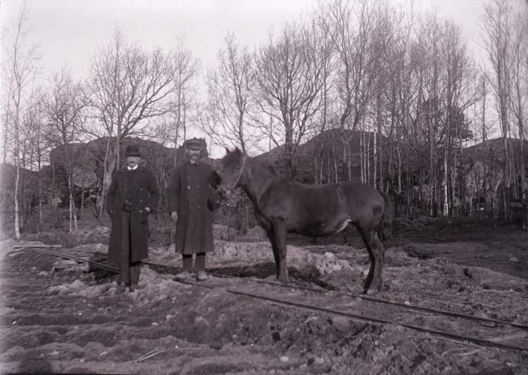 """Enligt text som medföljde bilden """"Conrad 1918/1919 Norr Hamre""""."""