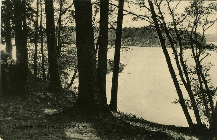"""Tryckt text på vykortets framsida: """"Uddevalla, motiv från Gustafsberg."""" ::"""
