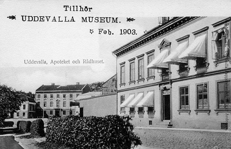 """Tryckt text på vykortets framsida: """"Uddevalla Apotek och Rådhuset.""""  ::"""