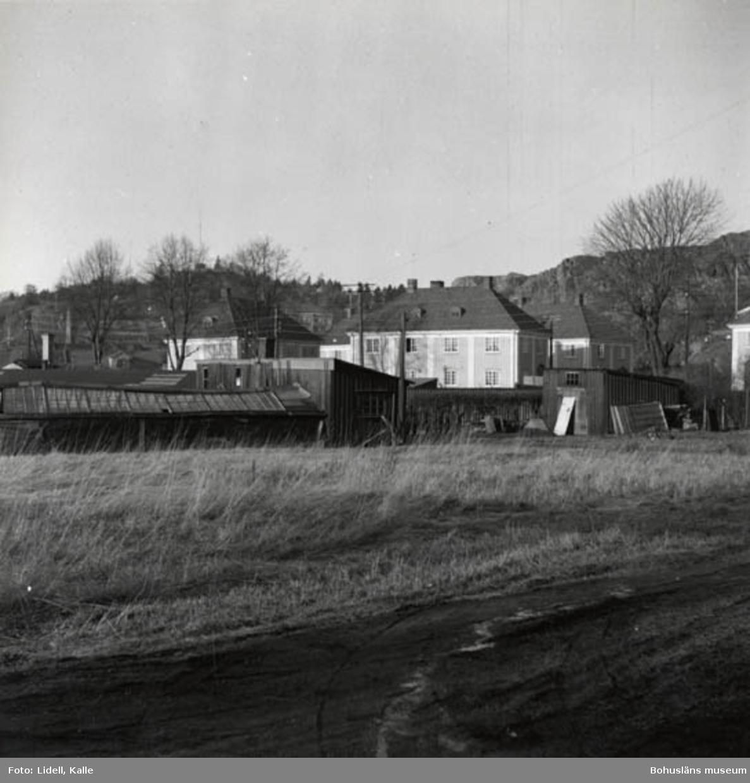 """Enligt fotografens bildlista: """"Strands växthus med husen i kvarteret Örnen."""