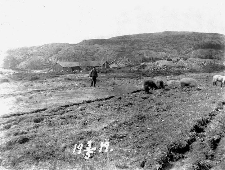"""Enligt noteringar: """"Johannes A. på Hamranne, 3 maj 1919."""""""