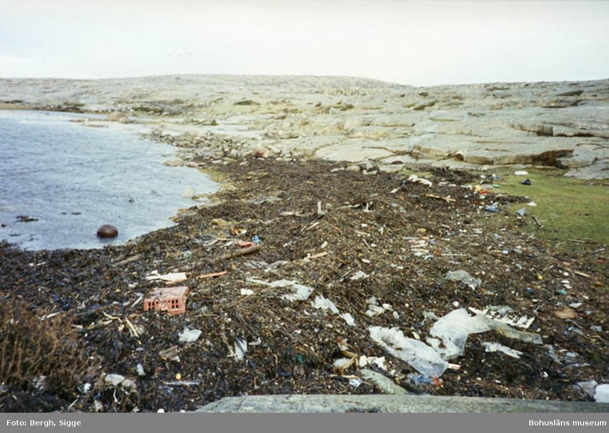 """Enligt text på fotot: """"Vid Haby bukt Ramsvik Sotenäset våren 1992. Så här kan det se ut med skräp på vårarna""""."""