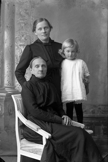 """Enligt fotografens journal Lyckorna 1909-1918: """"Edman, Fru Ljungskile""""."""