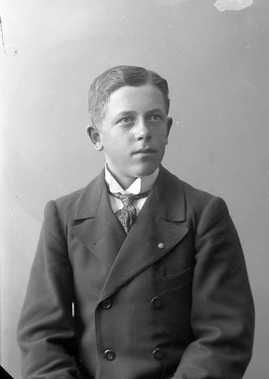 """Enligt fotografens journal nr 2 1909-1915: """"Stenborg, Anders Här""""."""