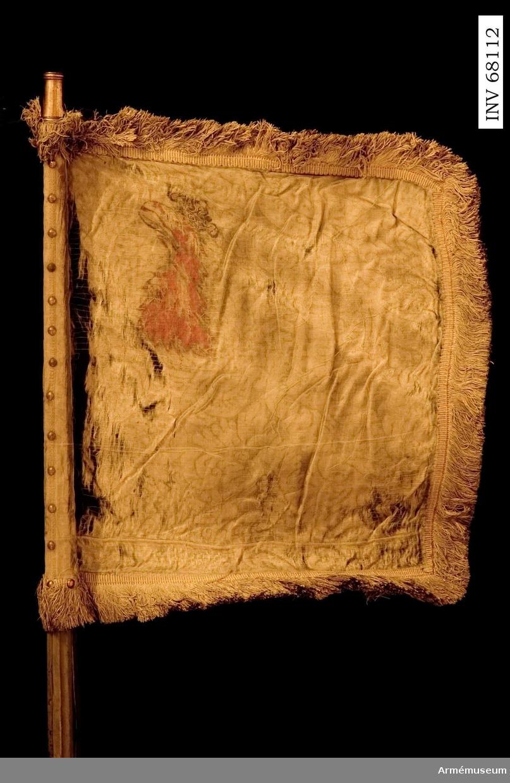 Duk: Enkel, tillverkad av gul sidendamast, nedtill skarvad med en horisontell skarv. Duken fäst med tre rader tennlikor på mönstervävt band i gult.  Dekor: Målad omvänt lika på båda sidor Skånes vapen, i övre, inre hörnet ett rött griphuvud krönt med öppen krona i guld, vänder sig mot stången.  Frans: Duken är kantad med dubbel gul silkesfrans.  Stång: Tillverkad av trä, kannelerad och gråmålad. Löpande bärring. Holk av förgylld mässing. Saknar spets. Två ringar av järn nedtill. Klack av järn.