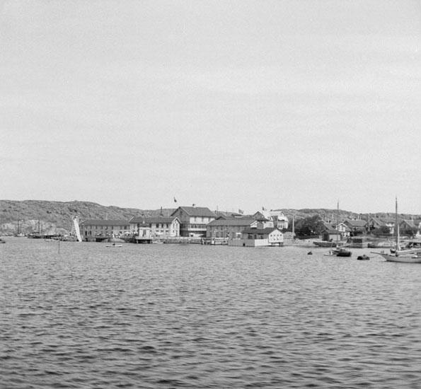 (Stereo karta XVI) Arvidsvik. 1 Augusti 1926.