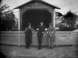 Folkets Park, Uddevalla 1929