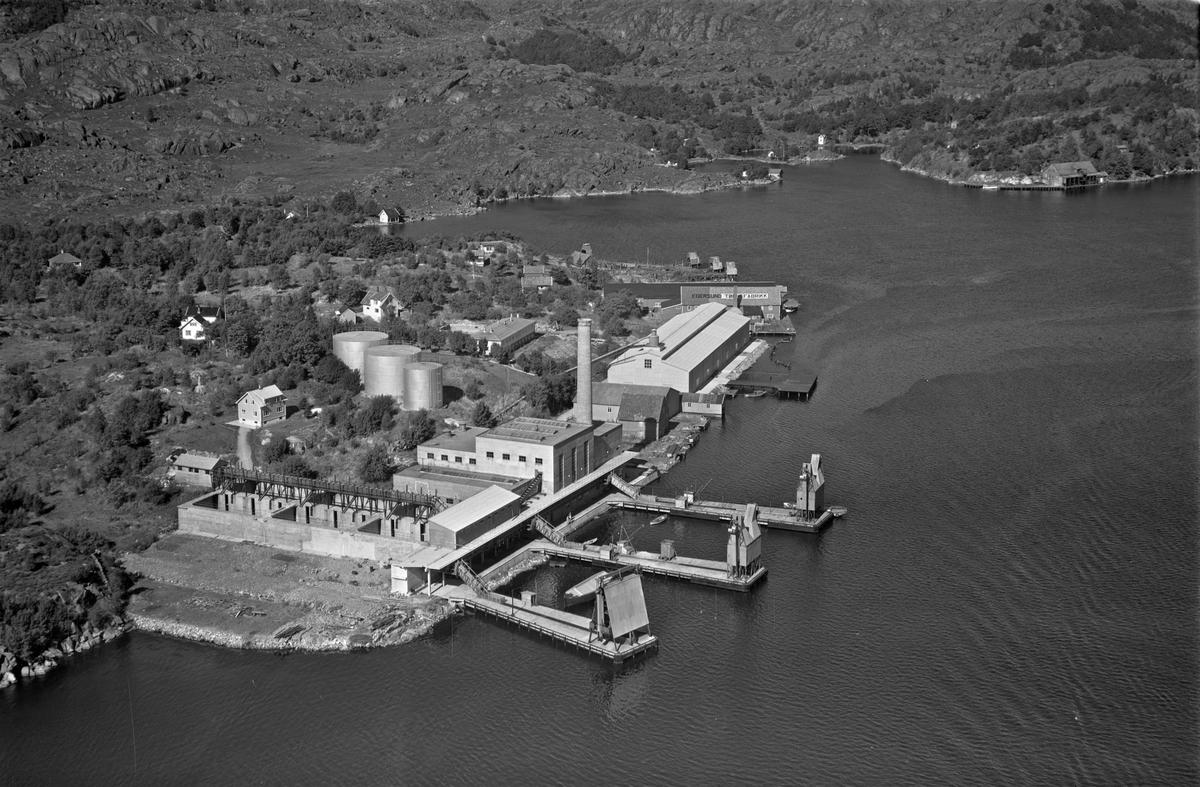 Sildefiskernes fabrikklag, Fiskarvig, Svanavågen, Kaubaneset