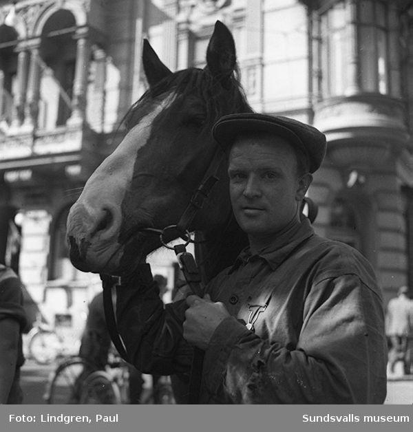 Häst som har skenat, man har fångats in, möjligen vid Stockholms central.