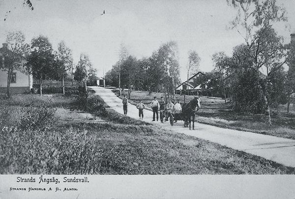 """I förgrunden häst med vagn och  i bakgrunden del av bostadshus och Strands sågverk. Tryckt text till vykortet """"Strands Ångsåg, Sundsvall. STRANDS HANDELS A B, ALNÖN."""""""