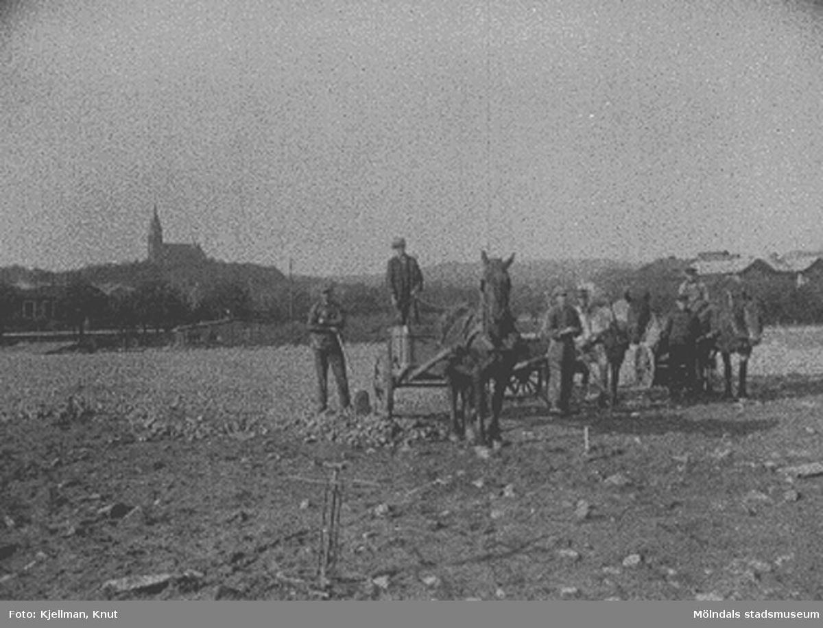 Nya torget (nuvarande Gamla torget) anläggs i Mölndal kvarnby 1924-1925. Nödhjälpsarbetare strör makadam över marken. Tredje mannen från vänster är Oskar Lund med hästen Grållen. Längst ut till höger står Korgmakar'ns Knut. I bakgrunden skymtar längst till vänster spårvagnsstallarna vid Göteborgsvägen, och längst till höger ses Svalövsbolagets lagerbyggnad och järnvägsstationen Mölndals Nedre. Nya torget finns inte sedan 1974, och alla de nämnda byggnaderna är rivna. Fässbergs kyrka, syns längst bak, är det enda som återstår.