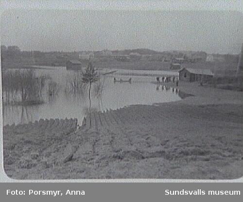 Vårfloden. Kattjärn i Skjöle som nu (1992) är nästan torrlagd blev till en stor sjö.